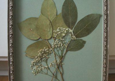 Blommor i lådinramning